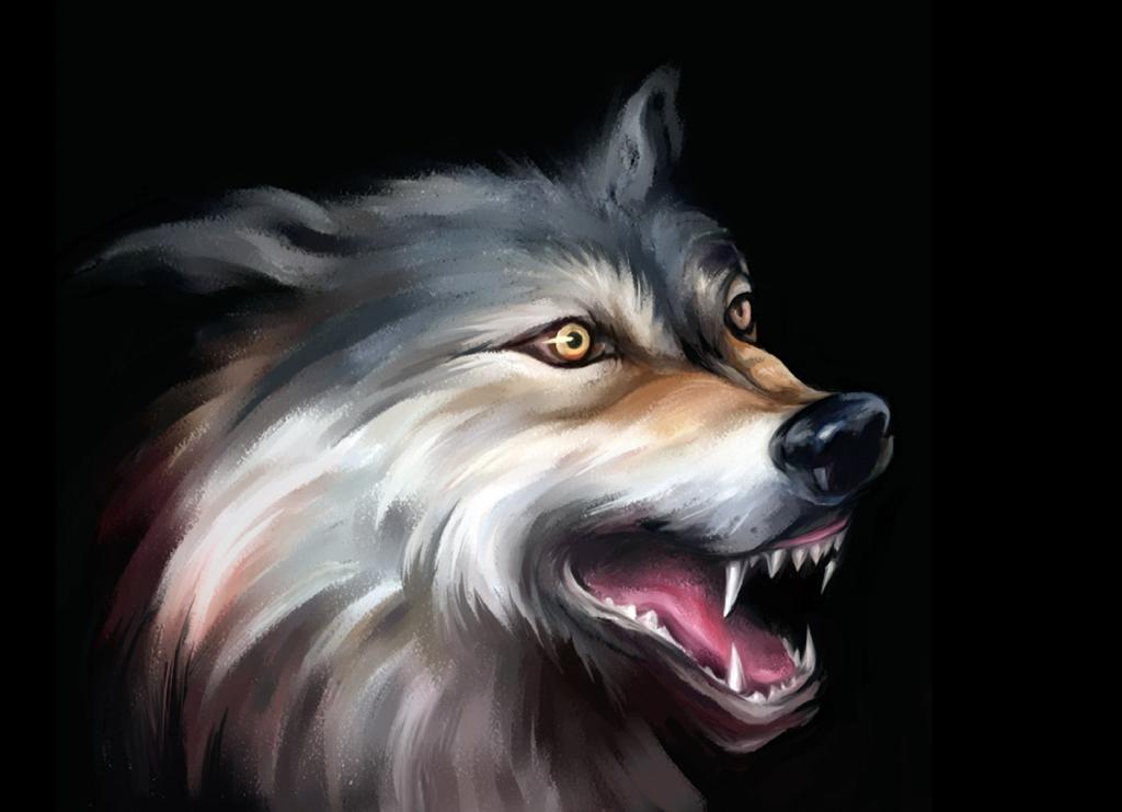 Wolf. Detail